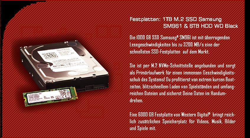 M.2 SSD Samsung SM961 & 6TB HDD WD Black
