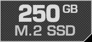 250 GB M.2 SSD