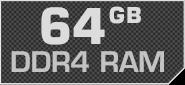64 GB DDR4 RAM