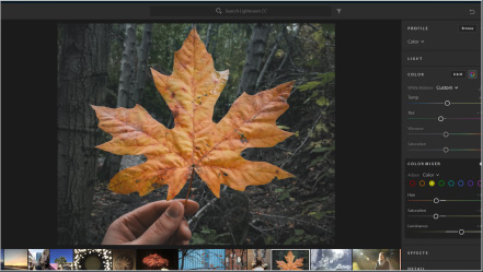 Adobe Creative Cloud Bild